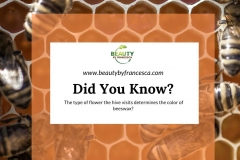 DYK-Beeswax